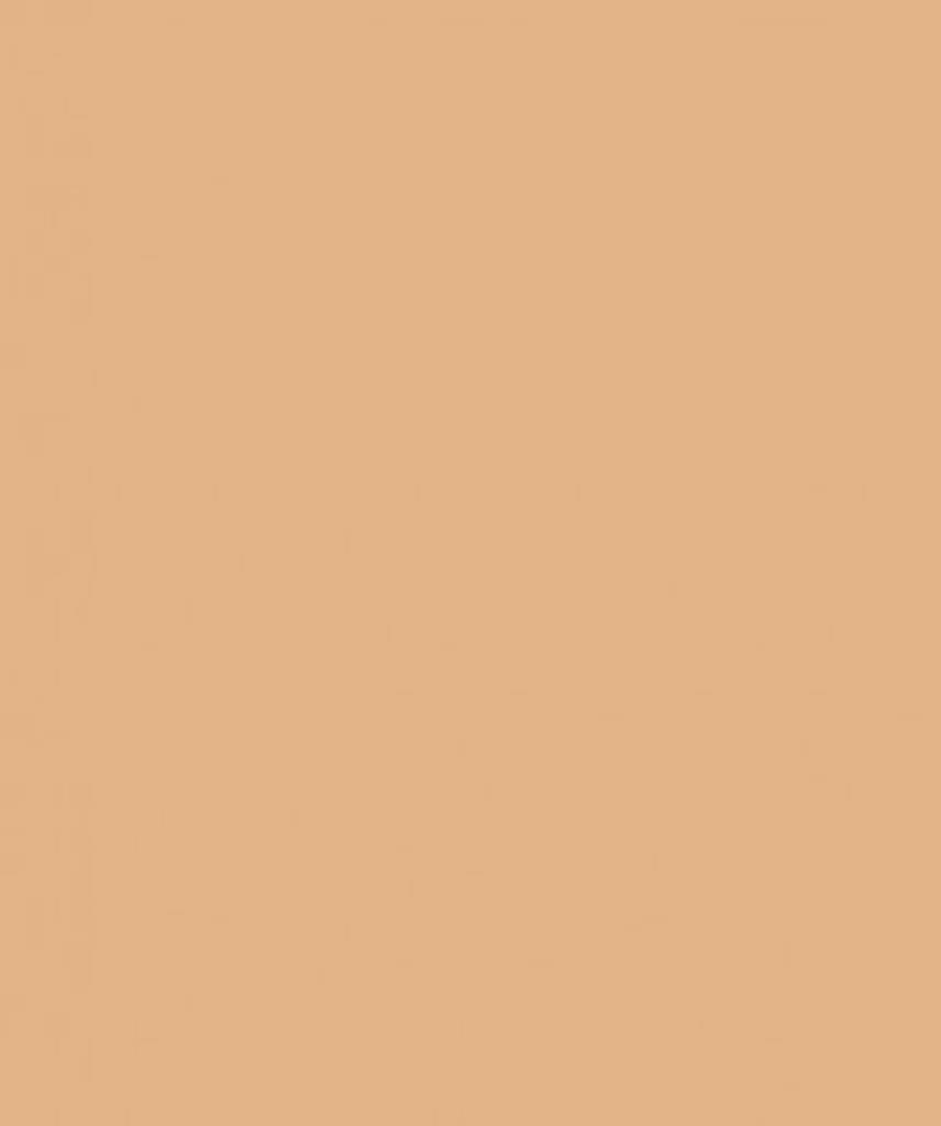 savage Фон Savage Widetone Almond 1.36m x 11m 79-1253