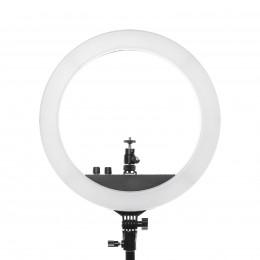 Набор света для фото-видео контента Mircopro RL-12IIK5 8 предметов