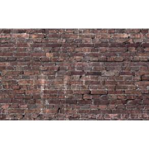 Напольный фон Savage Floor Drops Grunde Brick 1.52m x 2.13m