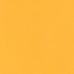 Фон бумажный BD Marigold 2.72x11m (169)