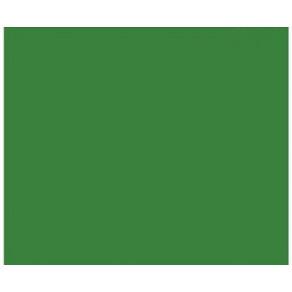 Фон бумажный BD Very Green 2.72x11m (132)
