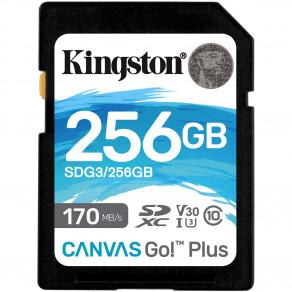 Карта памяти SD Kingston Canvas Go! Plus 256GB UHS-I, U3, V30 (R170/W90)